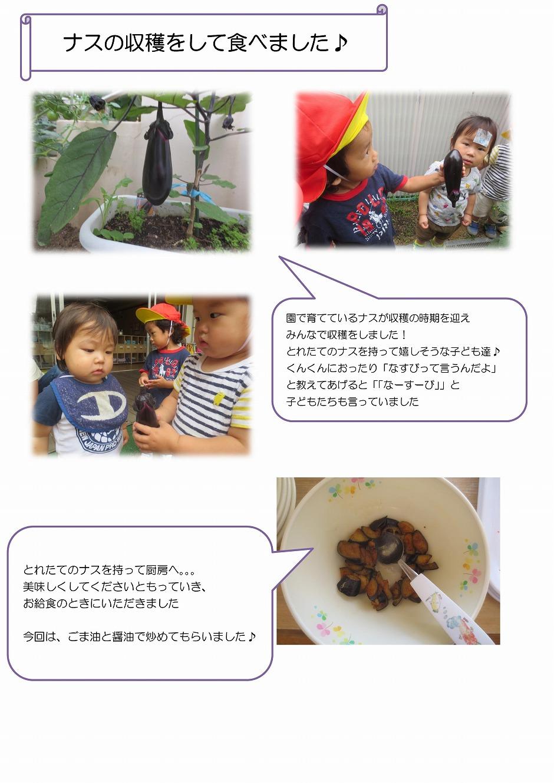 Microsoft Word - こぐま食育-001